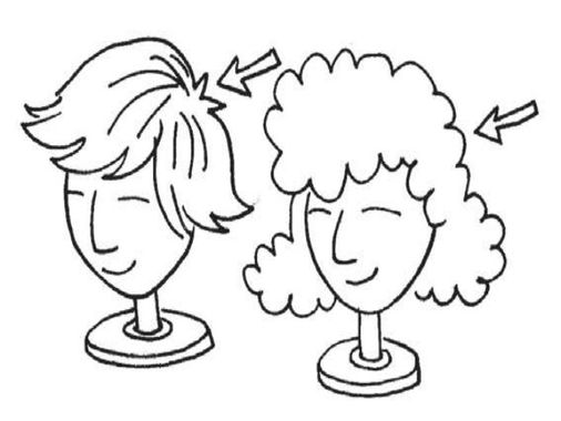 ENGLISH 2 Lesson 13 the pink wig