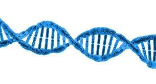DNA in de verkoop via blockchain technologie | De Ingenieur